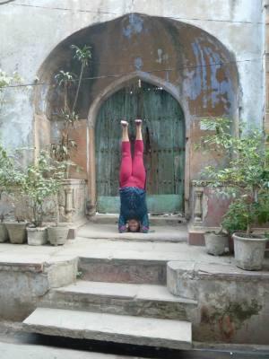 align your asana headstand