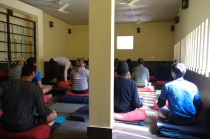 Cow shed yoga Rishikesh